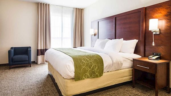 King Suite in Comfort Suites Greenville South